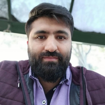 amirhabibzadeh
